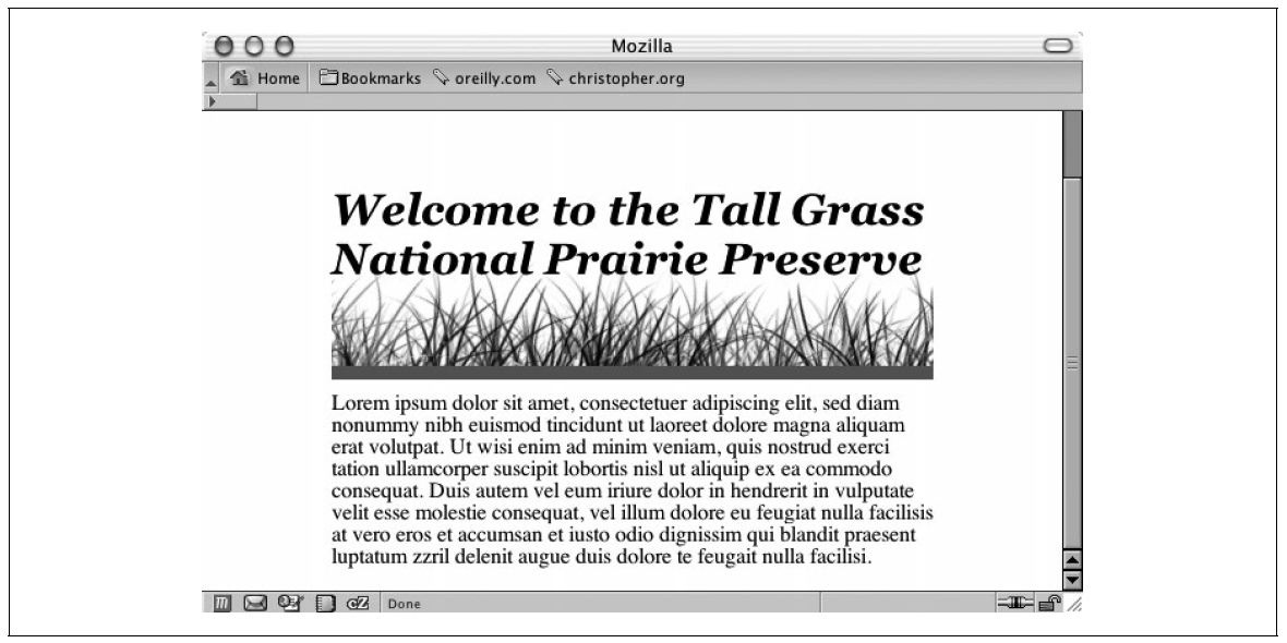data2type GmbH: CSS | Überschriftentext mit Bild versehen